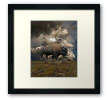 2972 Framed Print