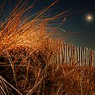 THIS BEACH IS ON FIRE by leonie7