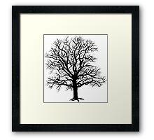 Tree III Framed Print