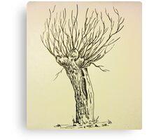 Dutch Willow Canvas Print