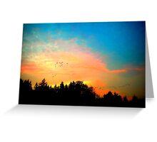 Geese Over Marymoor Greeting Card