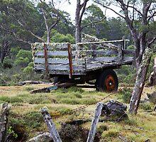 Old Cart by Steve Bass