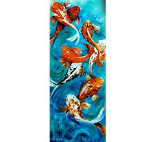 Koi Mirror Unframed Photographic Print