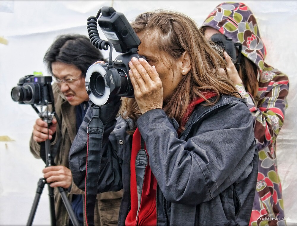 Magnum Photographers at Work by Mikell Herrick