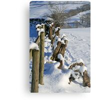 Snow in the Lakes Metal Print
