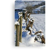 Snow in the Lakes Canvas Print