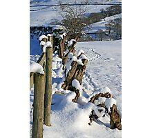 Snow in the Lakes Photographic Print