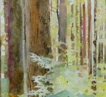 Seeing the Forest through the Trees, watercolor and mixed media on paper mounted on board, wax finish Sticker