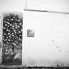 Portuguese wall Black and white by Sarah Cowan