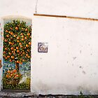 Portuguese wall (colour) by Sarah Cowan