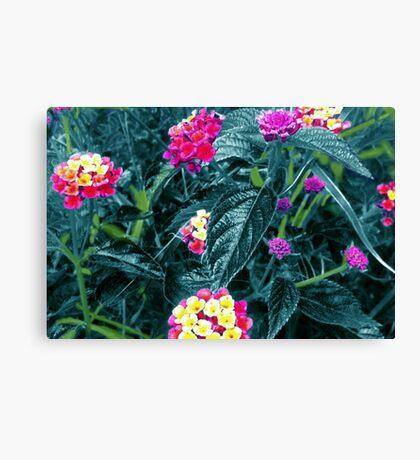 Wild Flowers - Electric Blue Canvas Print