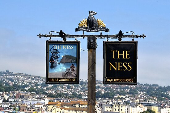The Ness Pub At Shelden, Devon uk by lynn carter