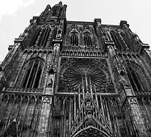 Strasbourg Cathedral by vannahgrey