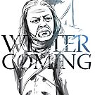 Winter is coming by zangetsuBankai