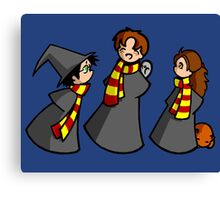Harry, Ron and Hermione Canvas Print