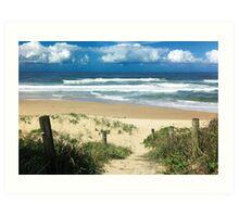Park Beach Out-look - Coffs Harbour Art Print