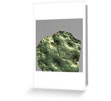 patina Greeting Card