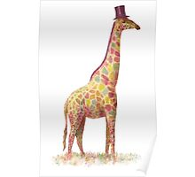 Fashionable Giraffe Poster