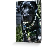 Just A Pup Greeting Card
