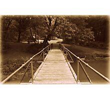 The Bridge landscape nature Photographic Print