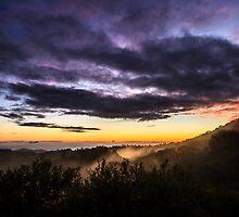 A Bush Twilight by Silken Photography
