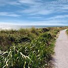 coastal gravel cliff path by morrbyte