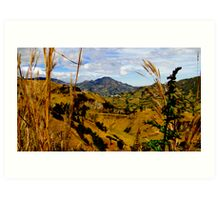 Magnificent Valley In The Andes Art Print