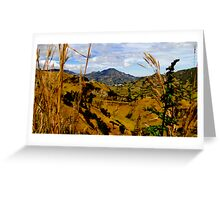 Magnificent Valley In The Andes Greeting Card