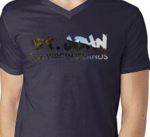 St John V Neck  Mens V-Neck T-Shirt