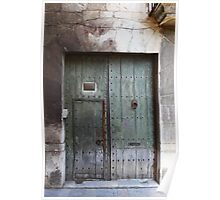 gate and front door Poster