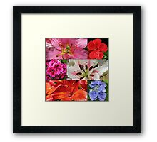 Summer Beauties Floral Collage Framed Print