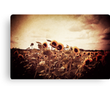 I Raise This Broken Halo To The Sky Canvas Print