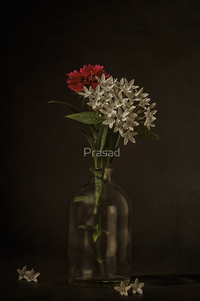 Still Life #3 by Prasad