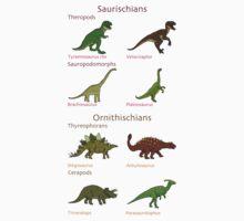 Dinosaur Classification Kids Clothes