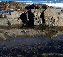 Rock Pool @ Park Beach by Victor van der Meer