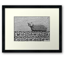 245 - CAT ON A PATCHWORK WALL - DAVE EDWARDS - INK - 2013 Framed Print