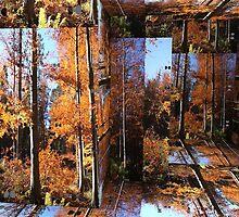 forest puzle by bogfl