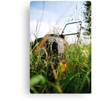 There is a lawn mower in these weeds! Canvas Print