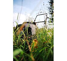 There is a lawn mower in these weeds! Photographic Print