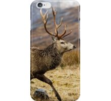 Red Deer Stag Running iPhone Case/Skin