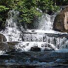 Alsea Falls< Oregon by Tamara Lindsey
