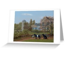 Fitting in at Fearrington Greeting Card