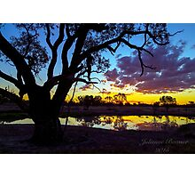 Kidman Camp Billabong  Photographic Print