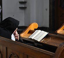 nun by gary roberts