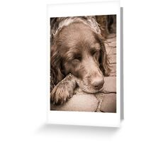 Shishka-Dog Sleeps Greeting Card