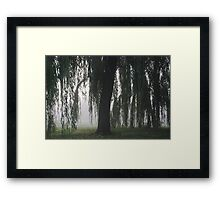 Foggy Willow Framed Print