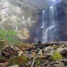 Saka waterfall  by Remo Savisaar