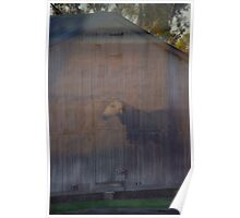 Barn Ghost Poster