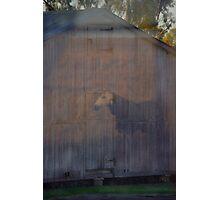 Barn Ghost Photographic Print