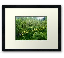 Hidden Patch of Flowers Framed Print